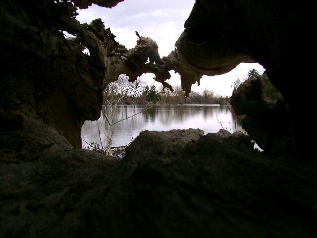 Lake through log by Robert Lake