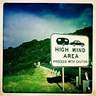 High Wind Area by Marita