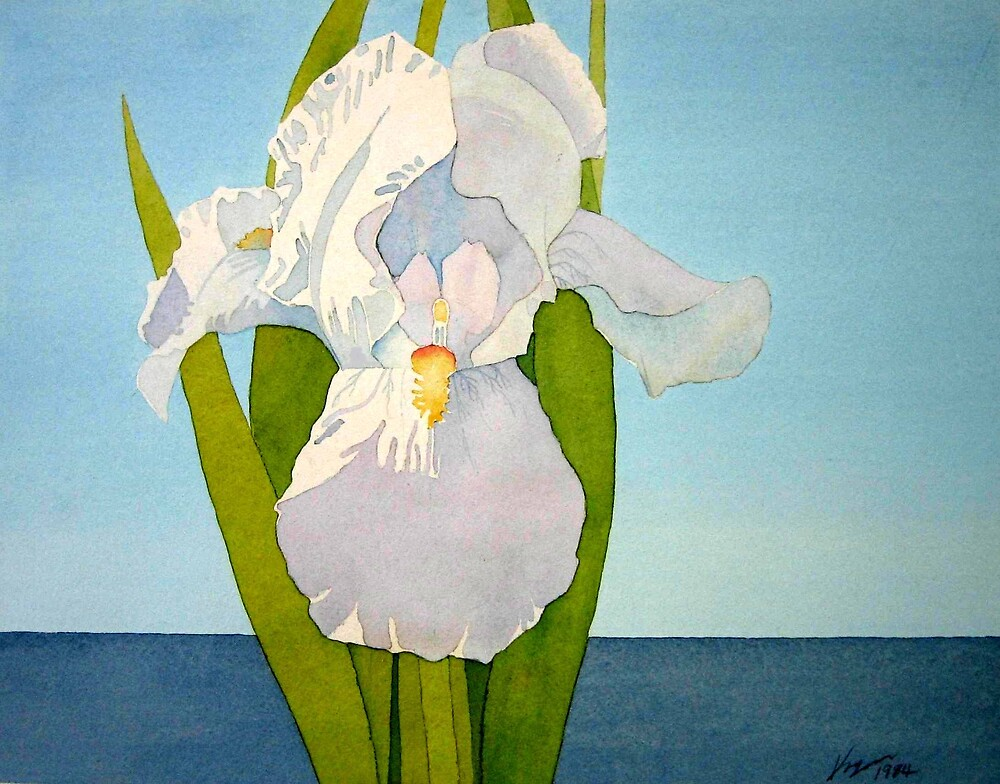 White Iris by Terry Krysak