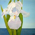 White Iris by Terry Krysak