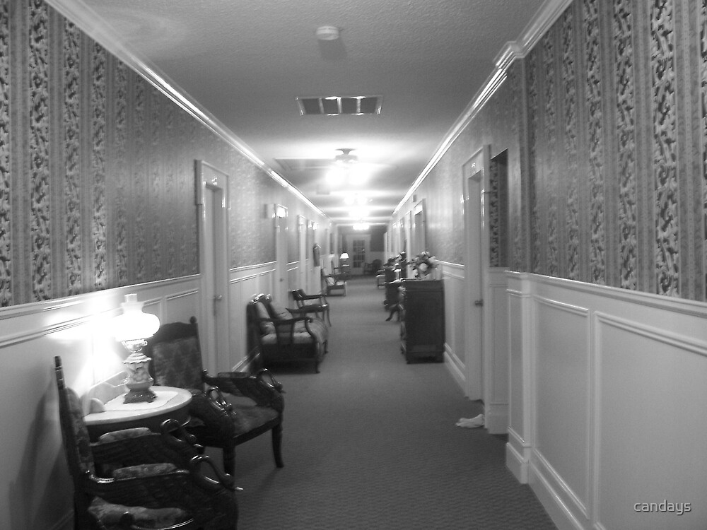 Long Hallway by candays