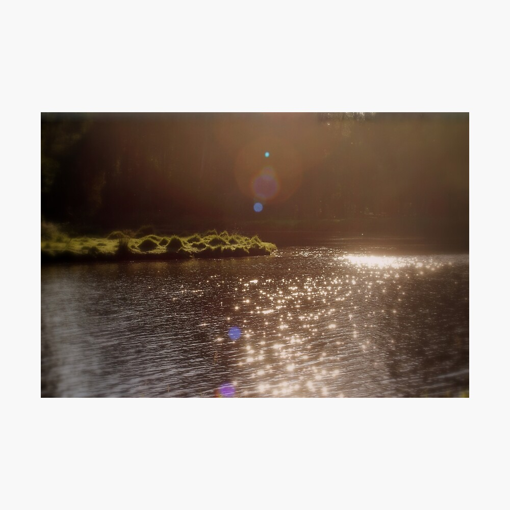 view across Trojan pond, near Goble, Oregon with flare 3 Photographic Print