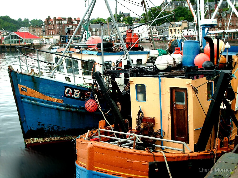 Boats in Oban  by Cheryl Morrice