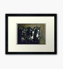 Three Cavalry Blacks Framed Print