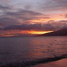 Majestic Maui by Teri Warne