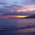 Maui Sunset by Teri Warne