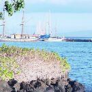 Pacific Port by Teri Warne