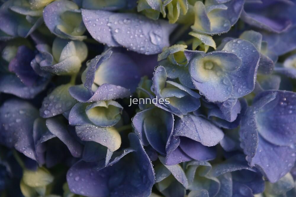NikoBlue Hydrangea Droplets by jenndes