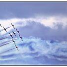 The Snowbirds practice 1 by Kim Brown