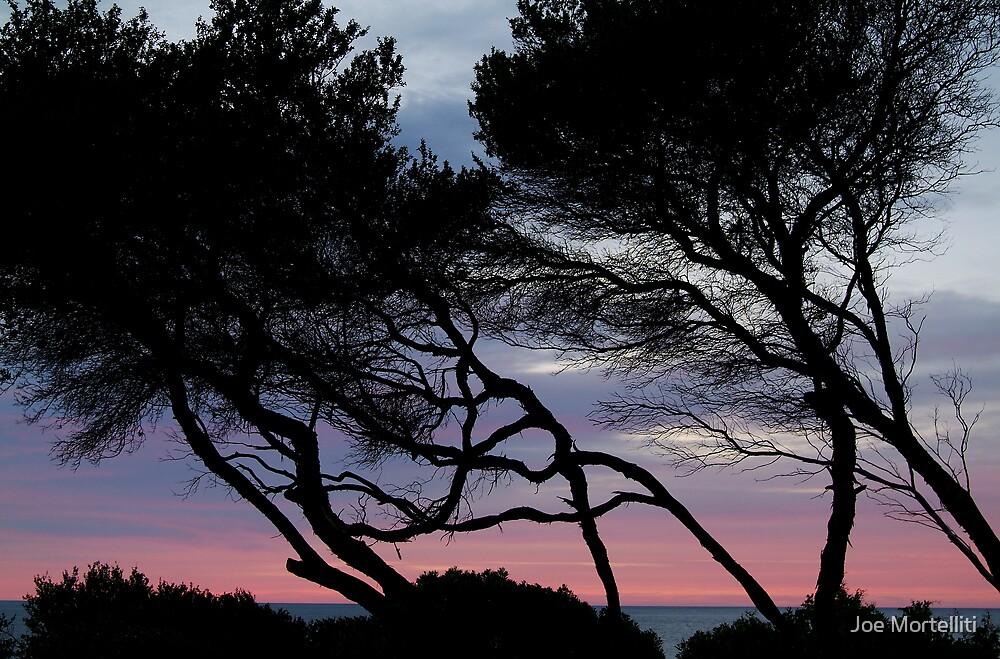 Point Grey, Lorne by Joe Mortelliti