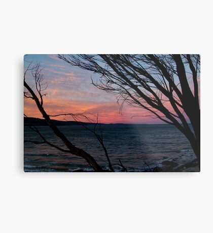 Louttit Bay, Great Ocean Road Metal Print