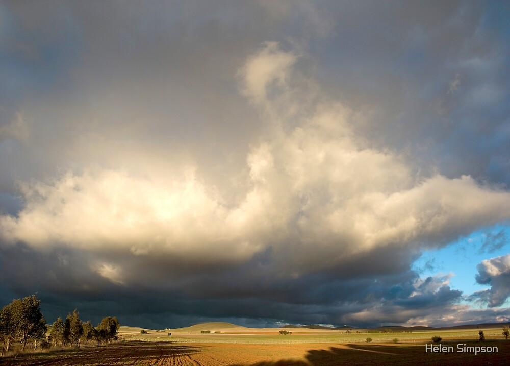Dark Horizon by Helen Simpson