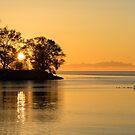 Golden Sunrise Glide With a Bit of Breeze by Georgia Mizuleva