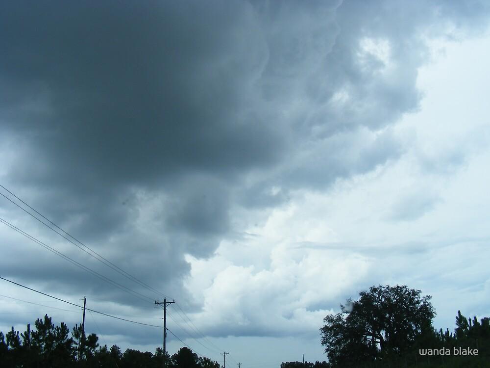 florida afternoon by wanda blake