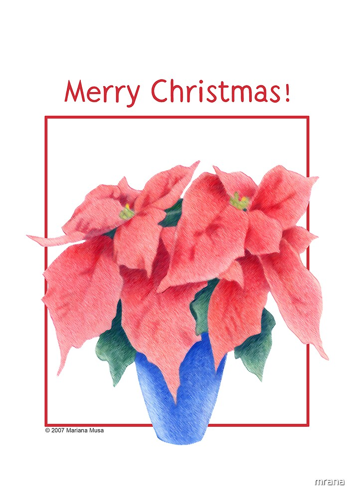 Poinsettia Christmas! by Mariana Musa