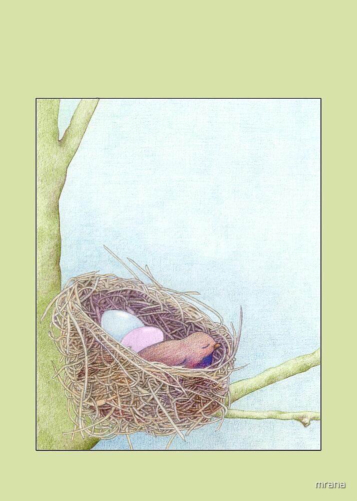 Bird's Nest by Mariana Musa