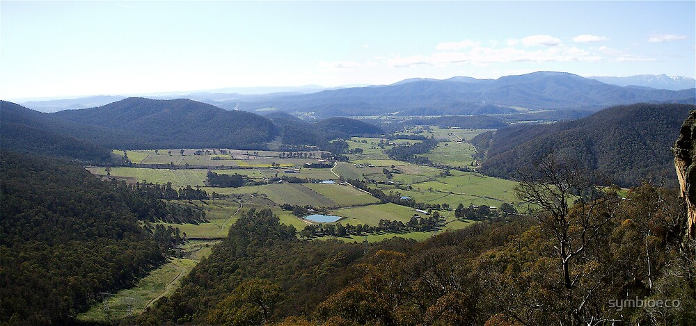 King Valley pan  by symbioeco