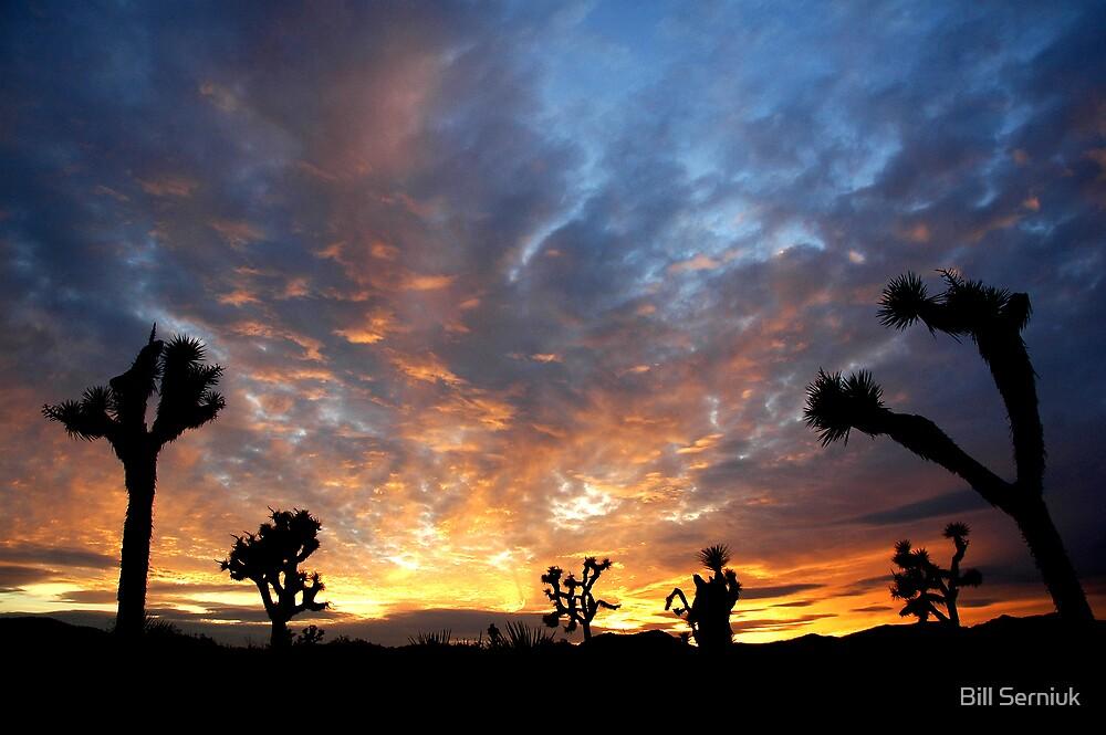 Queen Valley Sunset by Bill Serniuk