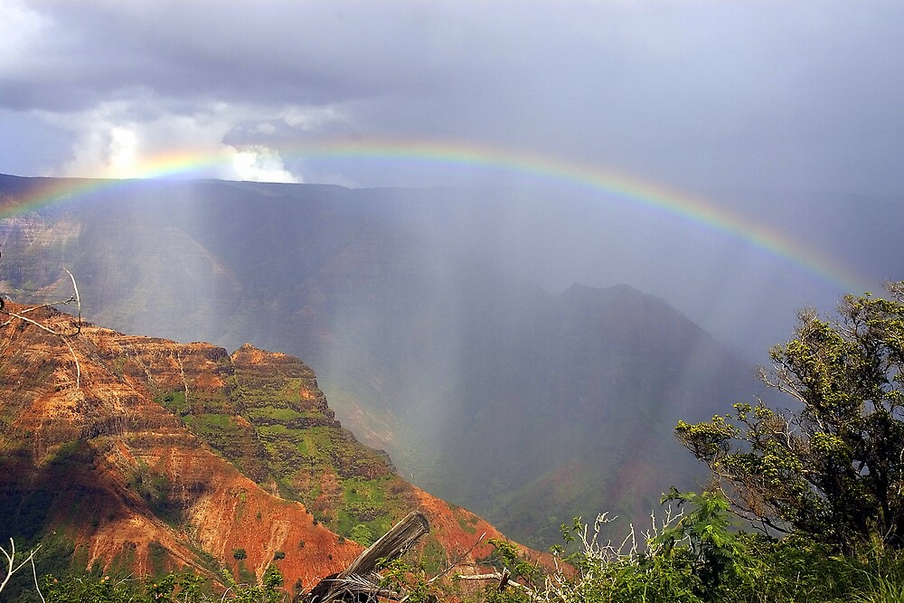 Waimea Canyon Rainbow by wyllys