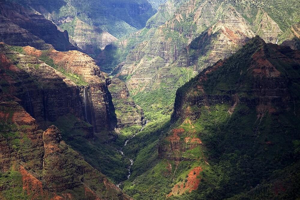 Waimea Canyon by wyllys