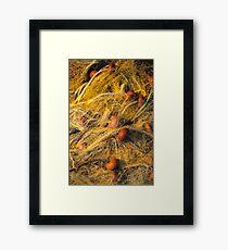 Net Framed Print