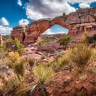 Arches National Park by vivsworld