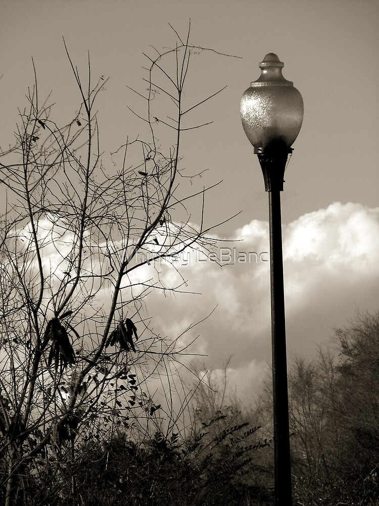 Lightpost by Whitney LeBlanc