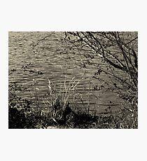 Riverside Photographic Print