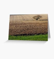 Ploughed Earth, Tree and Grass. Greeting Card