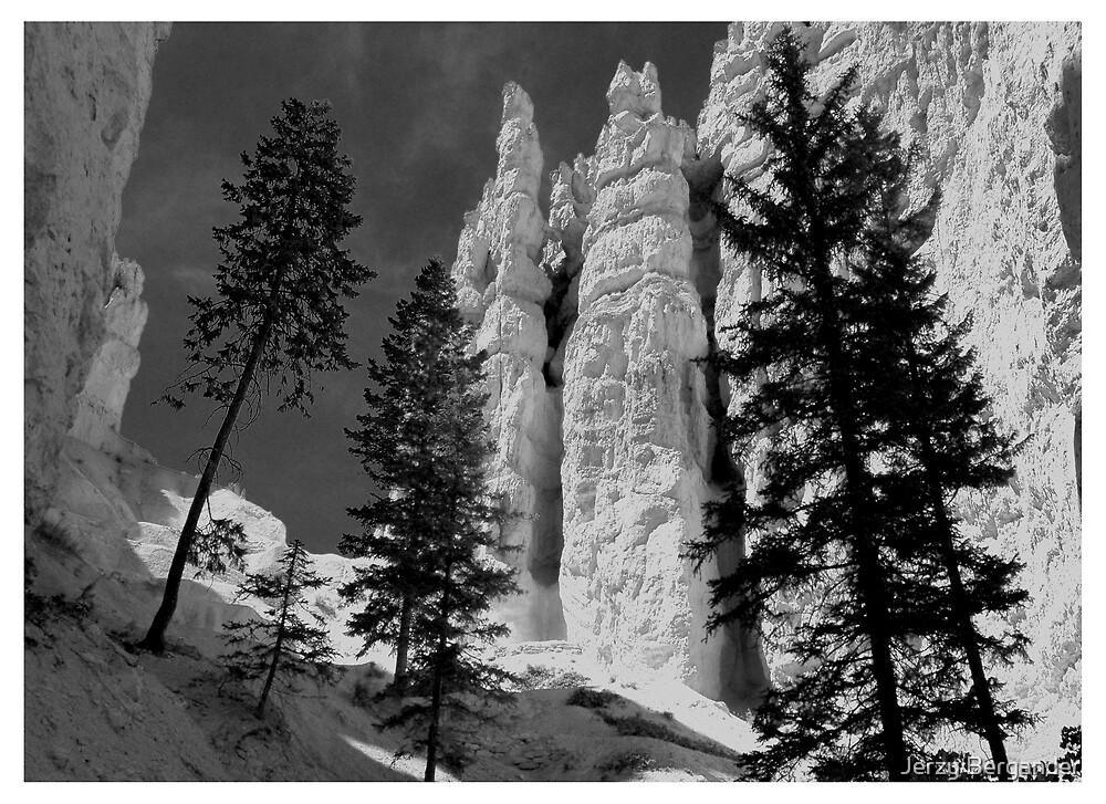 Bryce Canyon 1 by Jerzy Bergander