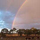 Rainbow's end by Michelle422