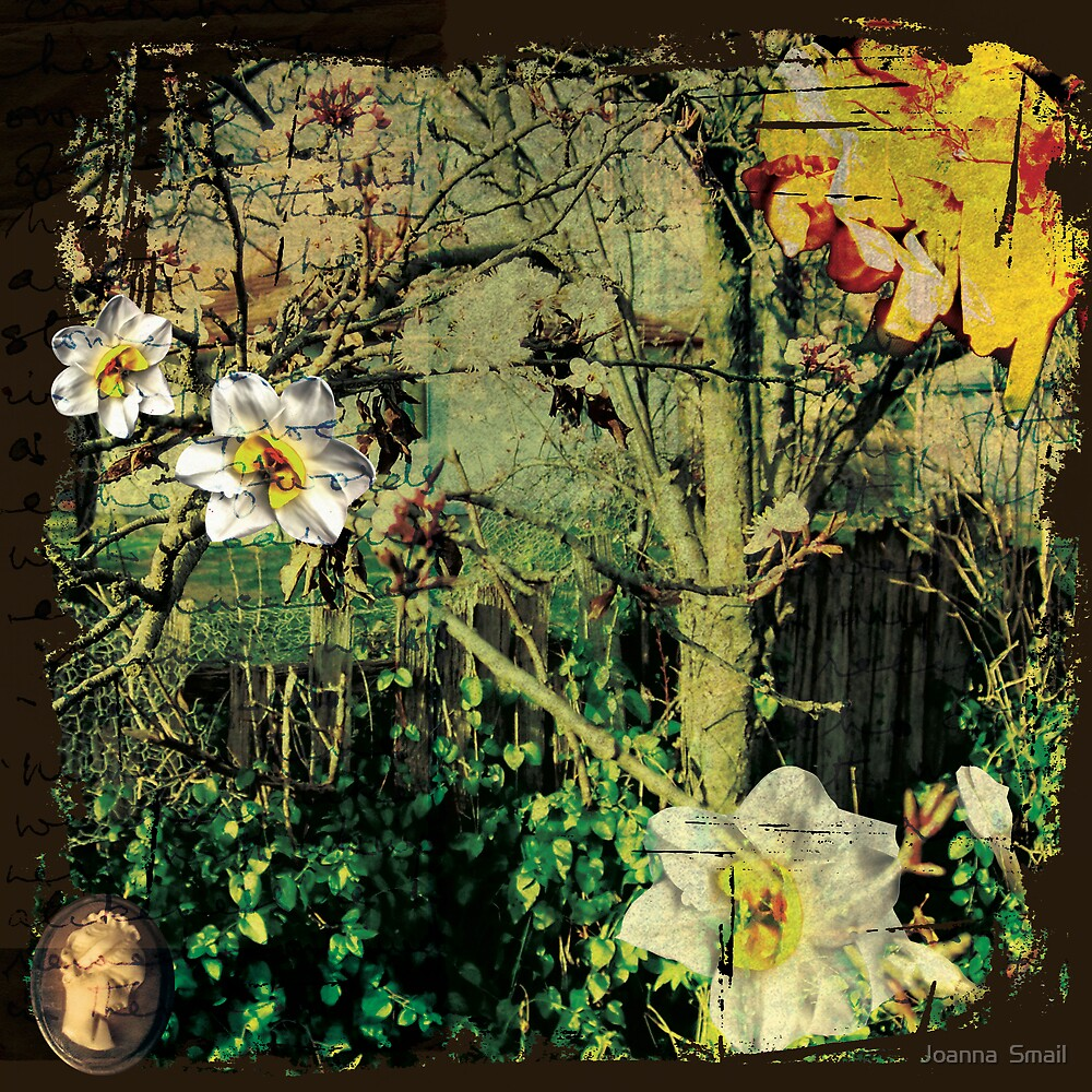 Vintage Garden by Joanna Smail