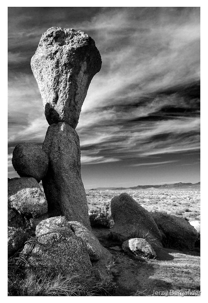 Desert 4 by Jerzy Bergander