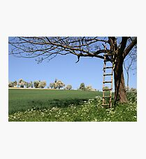 Ladder Photographic Print