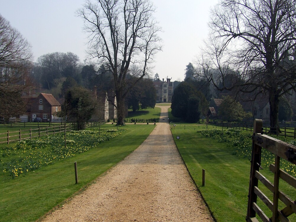 The English Countryside in Spring by John Thurgood