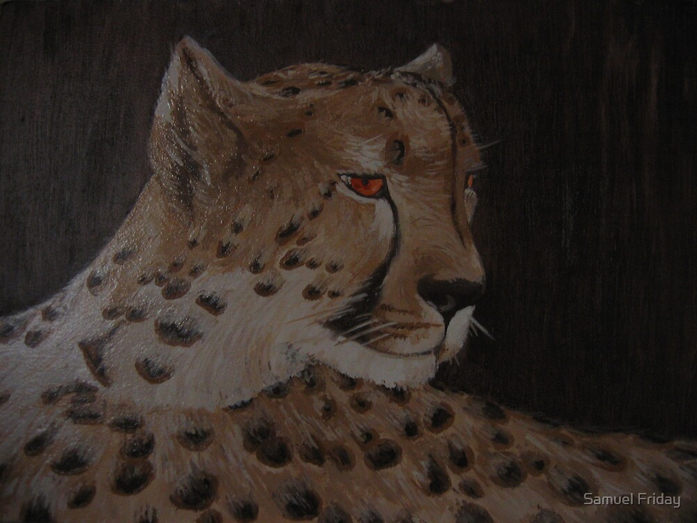 african cheetah by Samuel Friday