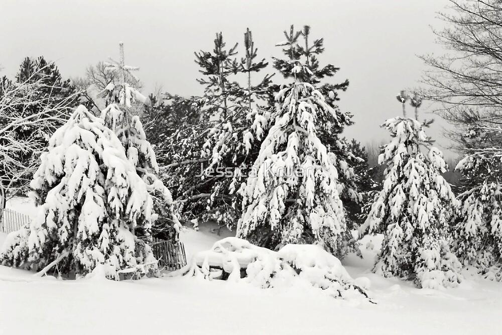 Caberfea Trees by Jessica Kruer