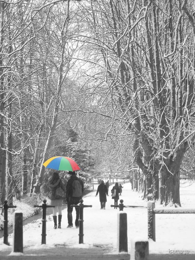 umbrella by isamaya