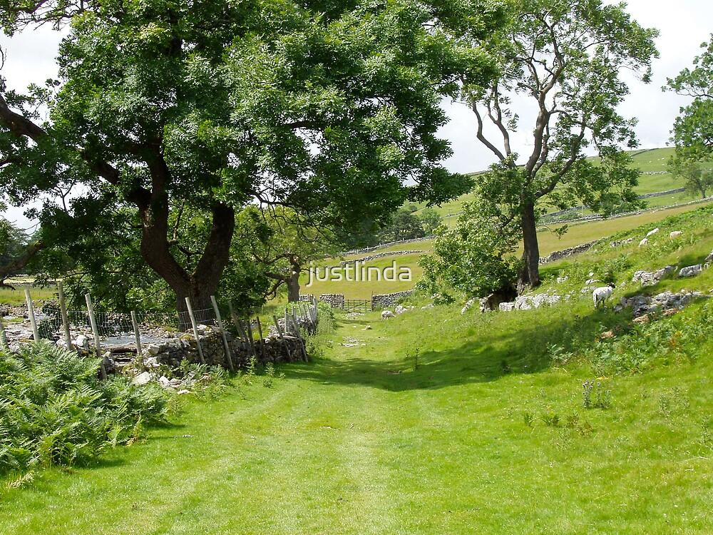 The Yorkshire Dales by justlinda