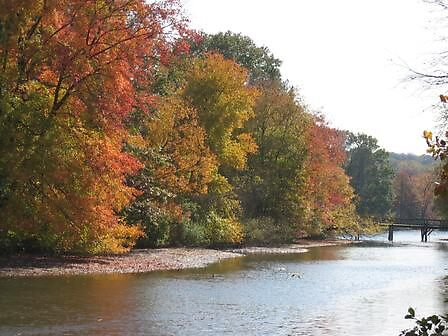 Autumn on the lake by Erica Tabi