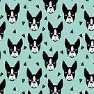 Boston Terrier - Minze von Andrea Lauren
