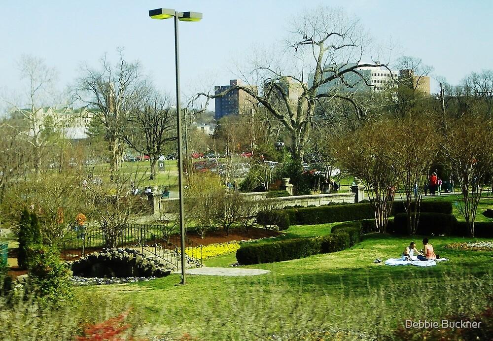 Nashville Park by Debbie Buckner