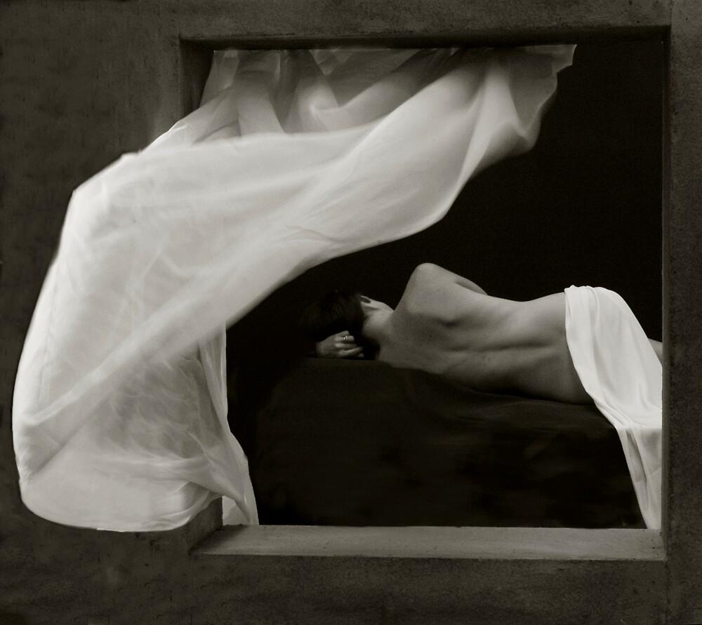 Window by Lawrence Winder