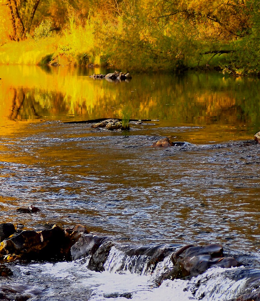 Amber River by Jayne Healy