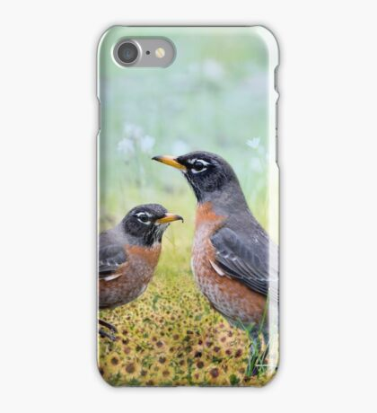 Robins, Heralds of Spring iPhone Case/Skin