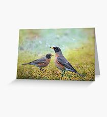 Robins, Heralds of Spring Greeting Card