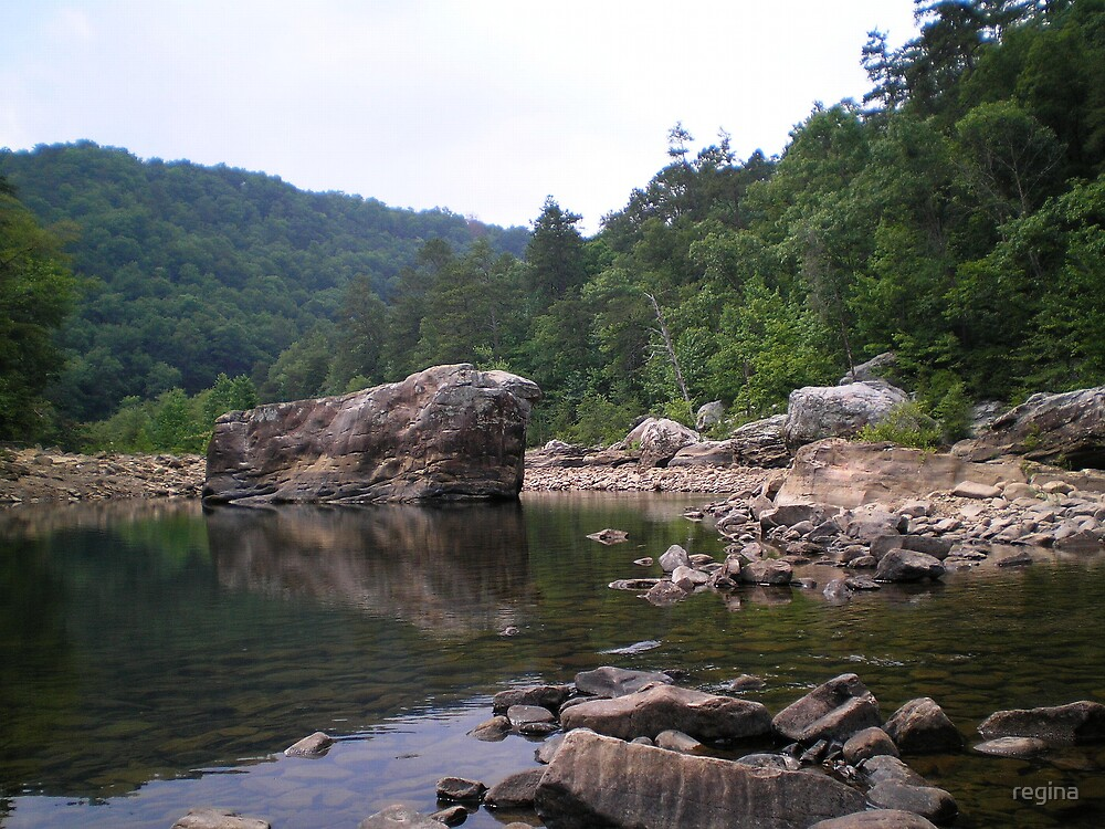 big rock little stream by regina