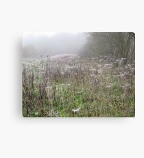 Image one hundred and twenty seven Canvas Print
