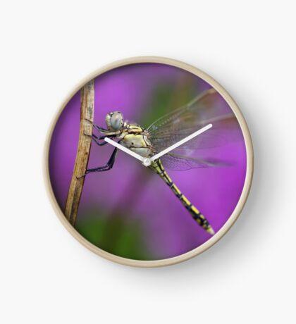 Fairies in my Garden Clock