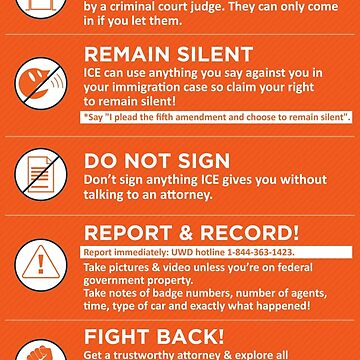 What to do if ICE IMMIGRATION POLICE come knocking by Kricket-Kountry